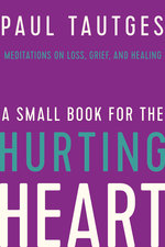 Small Book for the Hurting Heart Meditations on Loss Grief & Healing