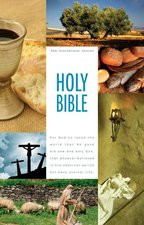 NIV BIBLE TEXTBOOK ED