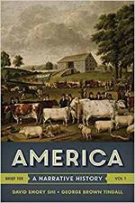 America Narrative History Volume One Package